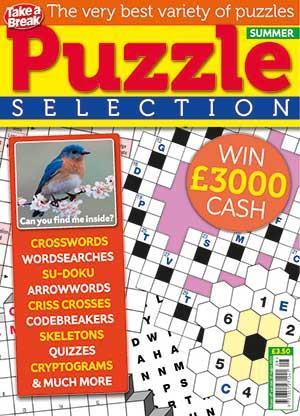 Puzzle Selection Subscription